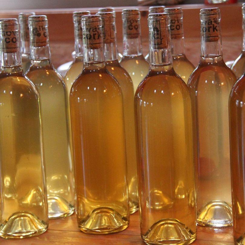 Wildcrafted rhubarb wine