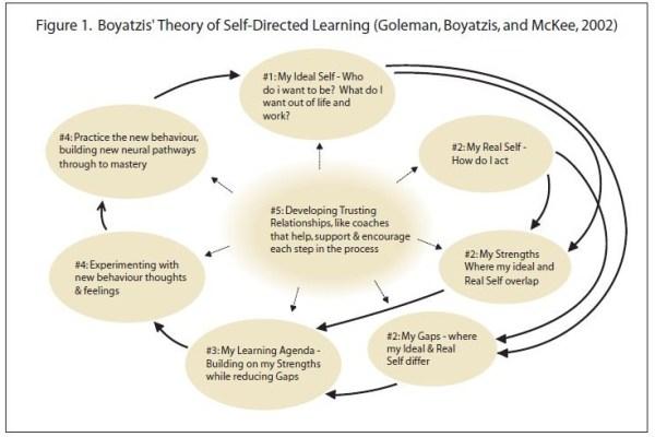 boyatzis diagram II