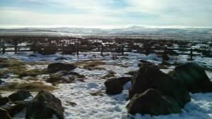 Snowy Derbyshire scene