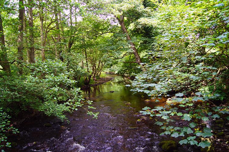 River Burn near Shaws Bridge