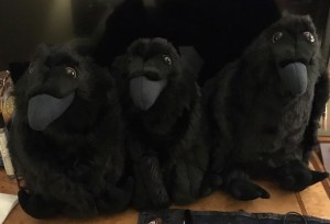Three Plushie Ravens