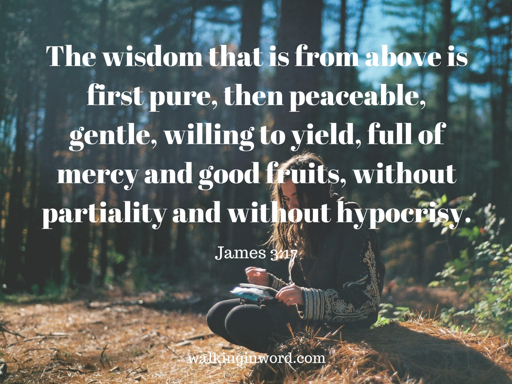 the-wisdom-that-is-from-above-is-first-pure-then-peaceable-gentle ...