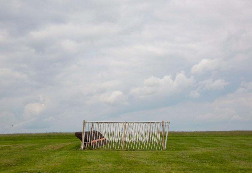 Horse jump, fence Middleham Moor