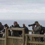 Group of photographers at RSPB Bempton Cliffs