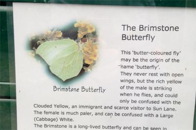 brimstone on reserve board