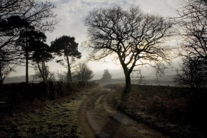 Country road, walk, burley in wharfedale, west yorkshire