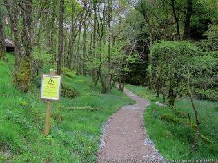 West Highland Way Section 3 Rowardennan to Inverarnan