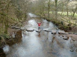 Giant Stepping Stones near Craig-y-nos Country Park
