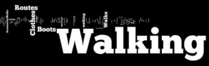 About Walks and Walking