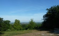 The View From High Beach Epping Forest