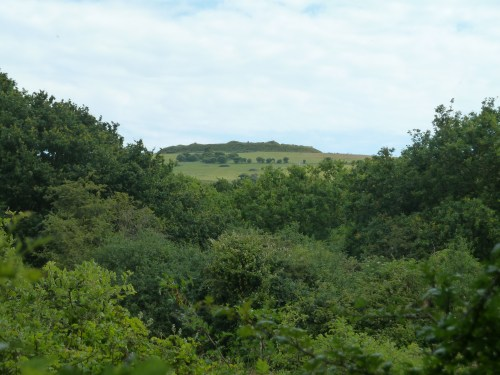 View of Bembridge Fort from Centurian's Earthworks Isle of Wight Walks