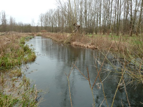 Walks And Walking - Essex Walks - Waltham Abbey to Epping Walking Route - Cornmill Meadows