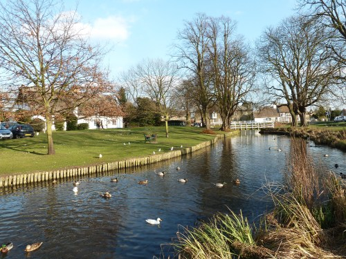 Walks And Walking - Milton Country Park Cambridge - Histon Village Pond