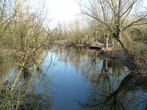 Walks And Walking - Milton Country Park Cambridge - Quarry Lake