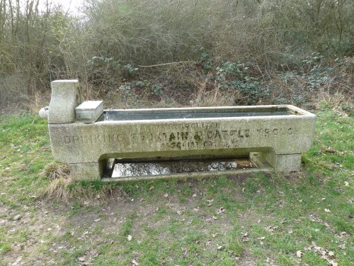 Walks And Walking - Essex Walks Epping Forest Holly Trail Walking Route - Cattle Drinking Trough