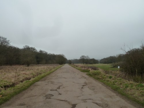 Walks And Walking - Essex Walks Epping Forest Kates Cellar Walking Route - Fairmead Road