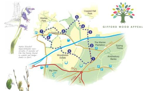 Walks And Walking - Essex Walks Epping Forest Gifford Wood Walking Route Map
