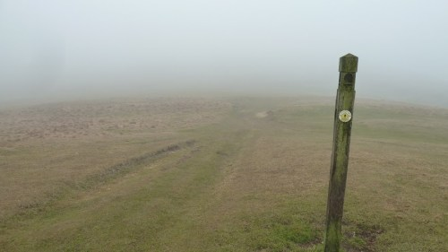 Walks And Walking - Cotswolds Walks Cheltenham Cotswold Way Walking Route - Misty Path