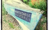 Walks And Walking - Kent Walks Whitstable Coastal Walking Route - Oysters