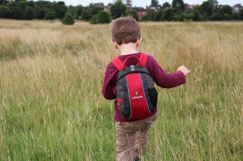 Tedi Liitle Life rucksack using Canon EOS 100D Camera Epping Forest