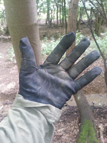 Walks And Walking - MacWet Sports Walking Gloves Review - After A Day In Epping Forest