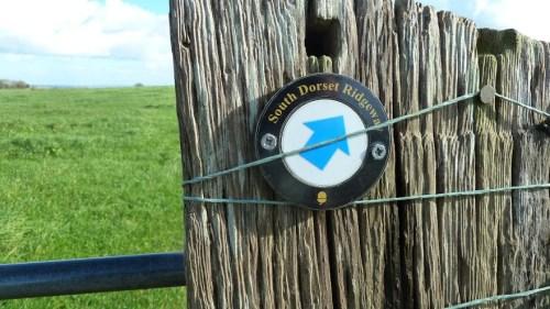 Walks And Walking - Dorset Walks Dorchester Hardys Monument Walking Route - South Dorset Ridgeway