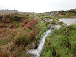 Walks And Walking - The Festival of Winter Walks - Cornwall