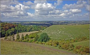 Walks And Walking - Winter Walks in London and the South East - The Chiltern Hills