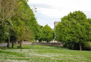 Walks And Walking - Top 3 Walks in Stratton Dorset - Stratton Village Green