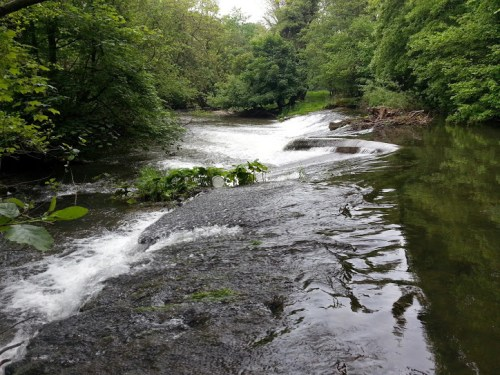 Walks And Walking - Newburn Farm Kington Walking Route - River Arrow