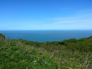 Walks And Walking - Hartland Walk in Devon - Lundy Island