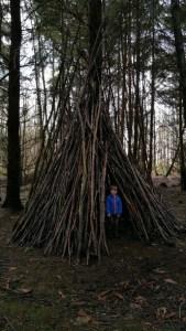 Walks And Walking - Densole Walk In Kent - Reinden Wood