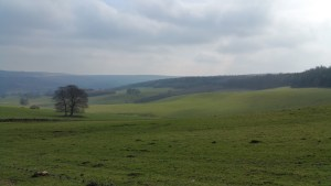 Darwin Forest Country Park Walks - Bakewell To Chatsworth House - Edensor