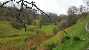 Darwin Forest Country Park Walks - Elam To Abney - Abney Clough