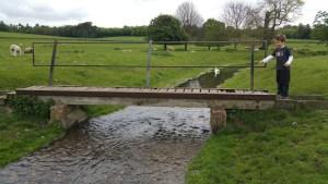 Walks And Walking - Bishopsbourne Walk In Kent - Bourne Park