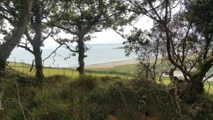 Walks And Walking - Par Sands Walk In Cornwall - The Saints Way - View Out To Par Sands