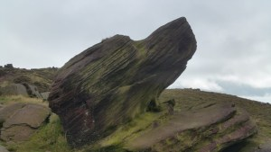 Walks And Walking - The Loaches Walk In The Peak District - Roaches dog