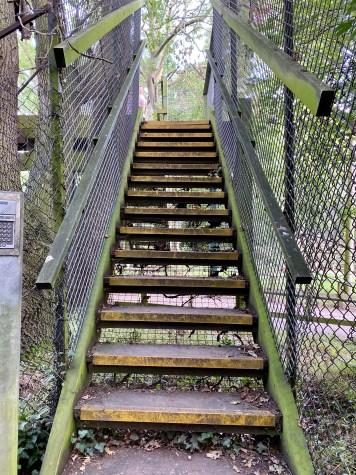 Footpath bridge through the animal park