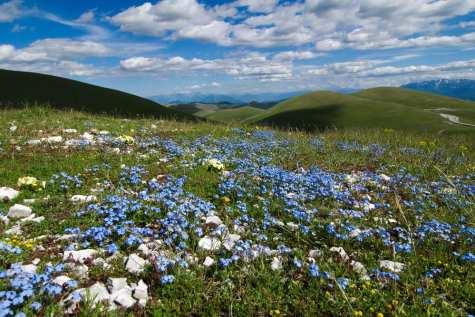 Countryside in Abruzzo