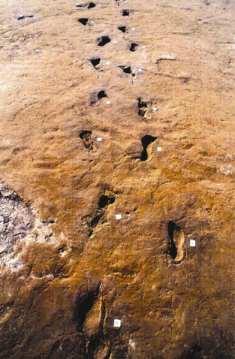 Prehistoric site at Nola, near Vesuvius
