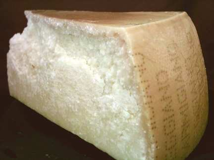 Parmigiano reggiano or parmesan cheese from Italy