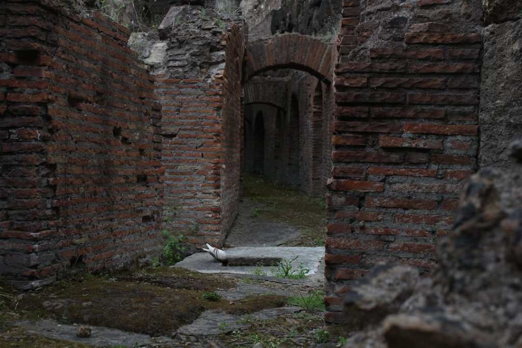 A view of the cells beneath the original floor of the Colosseum that were built to hold animals and gladiators, but not at the same time. Photo courtesy of Ryan Brown over at http://lostboymemoirs.com.