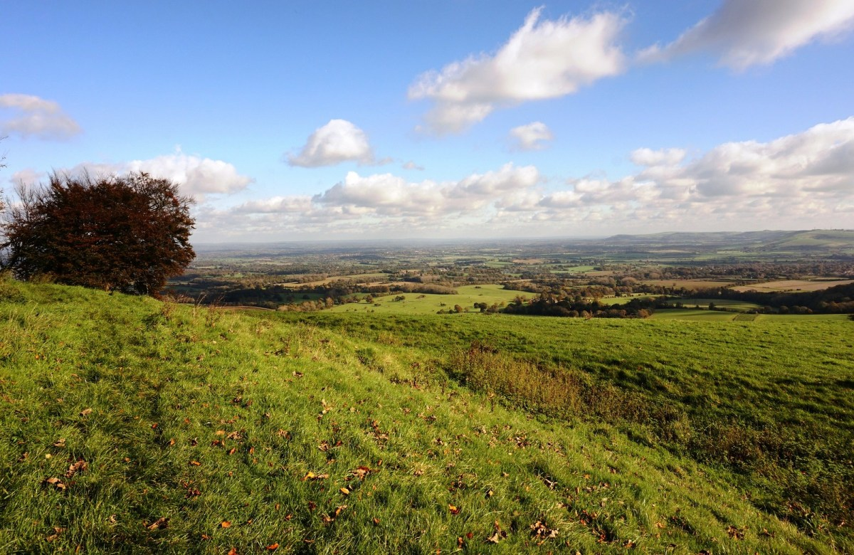Walk up Chanctonbury Ring from Finden