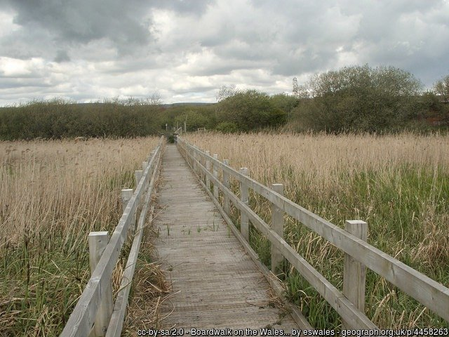 Boardwalk on the Wales Coast Path, Margam Moors