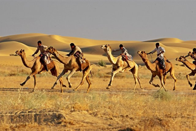 Maru Mahotsav Jaisalmer,Rajasthan.jpg