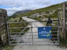 Snowdon_Ranger_Path_29