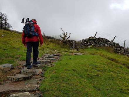cader_idris_pony_path_10