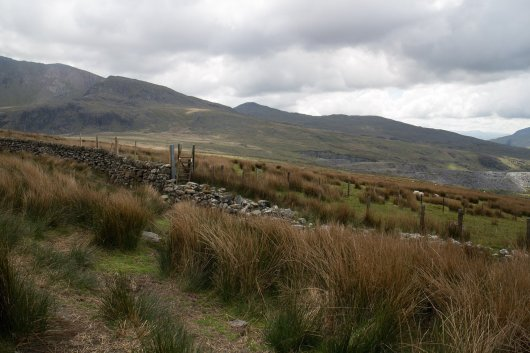 Clogwyn y Gwin Path and Maesgwm (110 of 135)