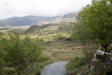 Clogwyn y Gwin Path and Maesgwm (55 of 135)