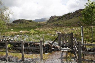 Clogwyn y Gwin Path and Maesgwm (60 of 135)